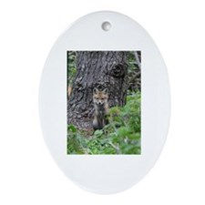 Cute Fox kit Oval Ornament
