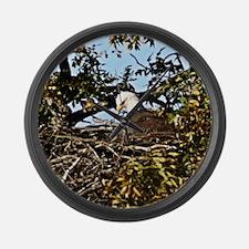 Llano county bald eagle Large Wall Clock