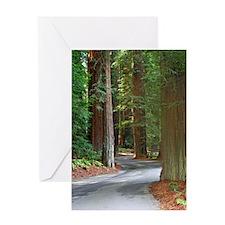 A drive through Richardsons Grove Greeting Card