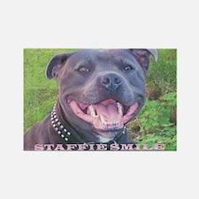 STAFFIE SMILE Rectangle Magnet (10 pack)