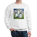 Owl Pigeons In Field Sweatshirt