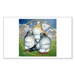 Owl Pigeons In Field Rectangle Sticker 10 pk)