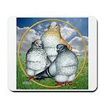Owl Pigeons In Field Mousepad