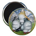 Owl Pigeons In Field Magnet