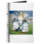 Owl Pigeons In Field Journal