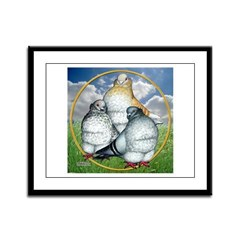 Owl Pigeons In Field Framed Panel Print