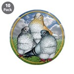 "Owl Pigeons In Field 3.5"" Button (10 pack)"