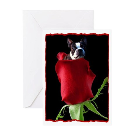 Red Rose Boston Terrier Greeting Card