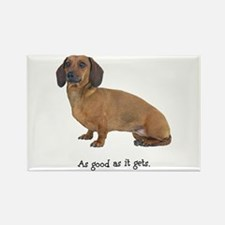 Good Dachshund Rectangle Magnet