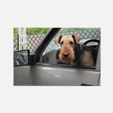 Cute Airedale Rectangle Magnet