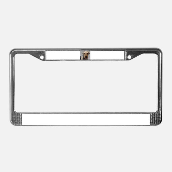 Unique Airedale terrier License Plate Frame
