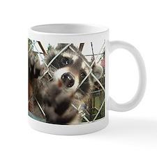 Raccoon Small Mug