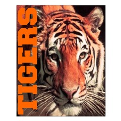 Tigers Posters