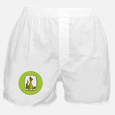 Kid's Dragon Boxer Shorts