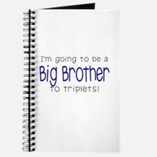 Big Brother to Triplets Journal