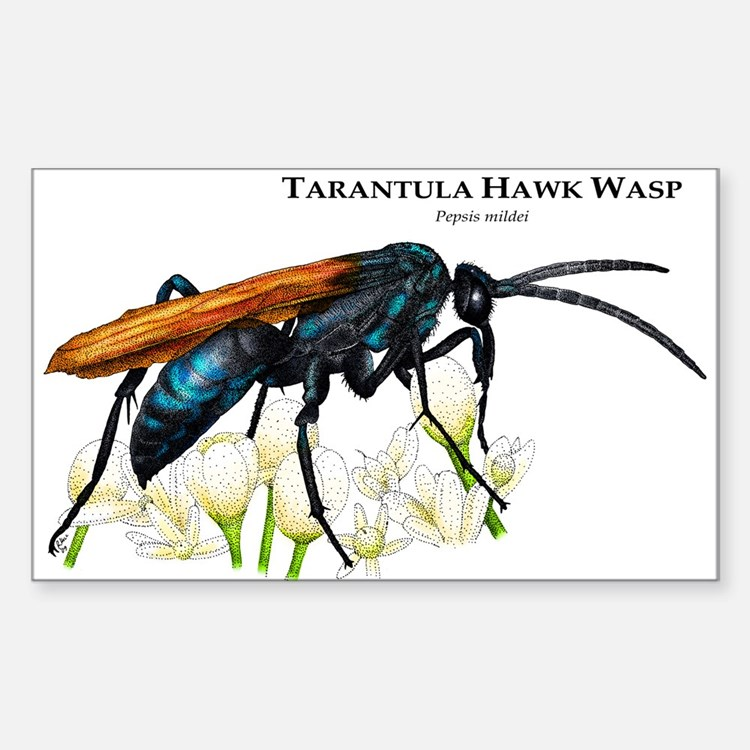 Tarantula Hawk Wasp Rectangle Decal