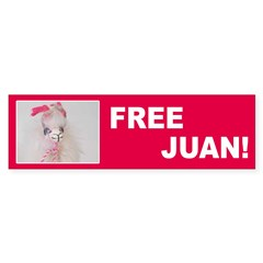 Free Juan Bumper Bumper Sticker