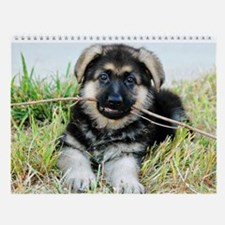 German Shepherd Puppy Calenda Wall Calendar