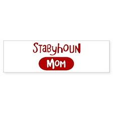 Stabyhoun mom Bumper Bumper Sticker