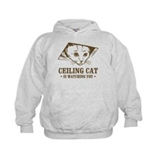 ceiling cat is watching you Hoodie