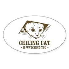 ceiling cat is watching you Oval Decal