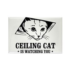 ceiling cat is watching you Rectangle Magnet