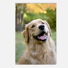 Good Boy Golden Postcards (Package of 8)
