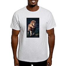 SOLO MALE Ash Grey T-Shirt