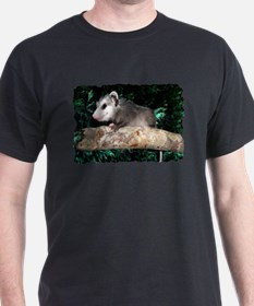 Possum Branch T-Shirt