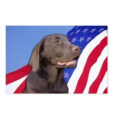 American Chocolate Lab Postcards (Package of 8)