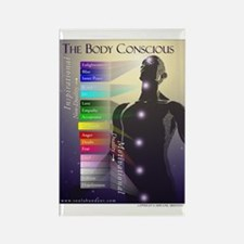 The Body Conscious Rectangle Magnet