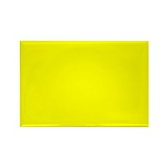Color 13 Rectangle Magnet (100 pack)