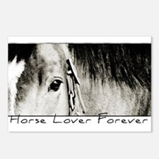 Horse Eye Art Postcards (Package of 8)