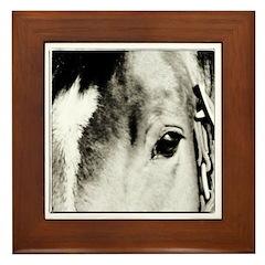 Horse Eye Art Framed Tile