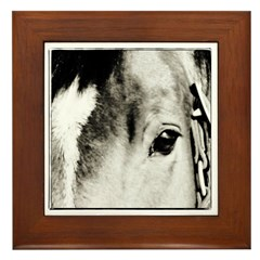 Horse Eye Art Framed Tile