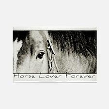 Horse Eye Art Rectangle Magnet