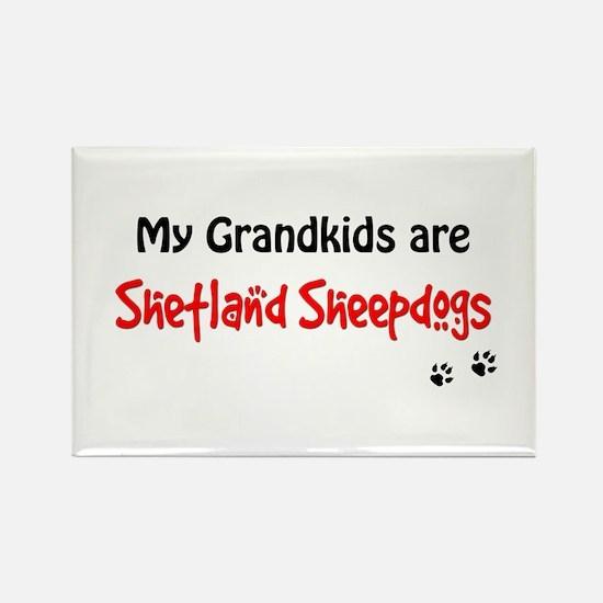 Sheltie Grandkids Rectangle Magnet