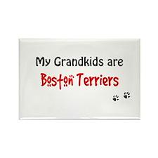 Boston Terrier Grandkids Rectangle Magnet