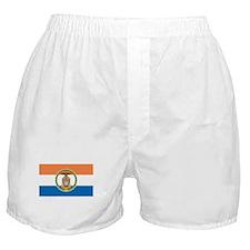 Bronx Flag Boxer Shorts