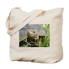 Galapagos Islands Turtle Tote Bag