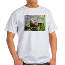 Galapagos Islands Turtle Ash Grey T-Shirt