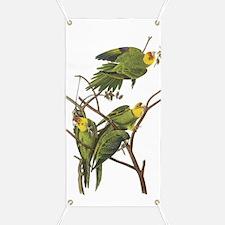 Carolina Parakeets Banner