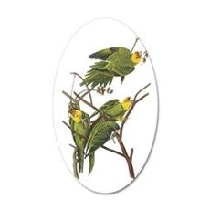 Carolina Parakeets Wall Decal