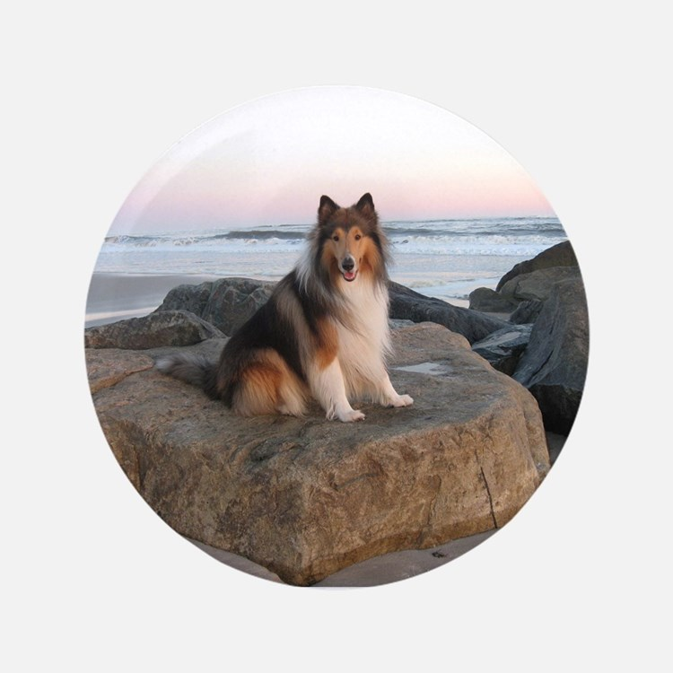 """Collie on the Rocks 3.5"""" Button"""