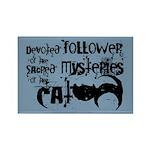 Cat devotion Rectangle Magnet (10 pack)