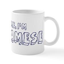 Trust Me I Am Vietnamese Mug