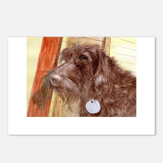 Chocolate Labradoodle Postcards (Package of 8)