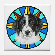 Springer Spaniel Tile Coaster