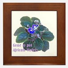 Gone to Pot African Violets Framed Tile