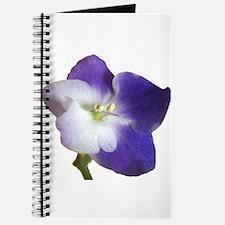 Park Avenue Blue Journal